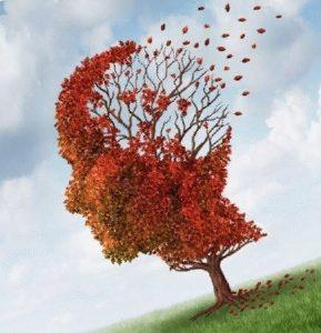 дерево в форме головы