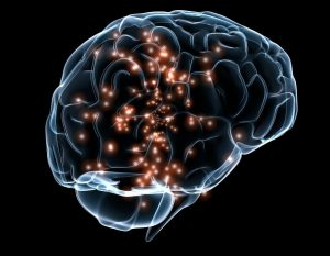 Как проверить голову: доступные исследования и их характеристика