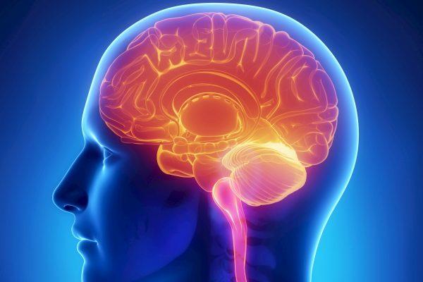 Энцефалопатия смешанного генеза причины симптомы лечение